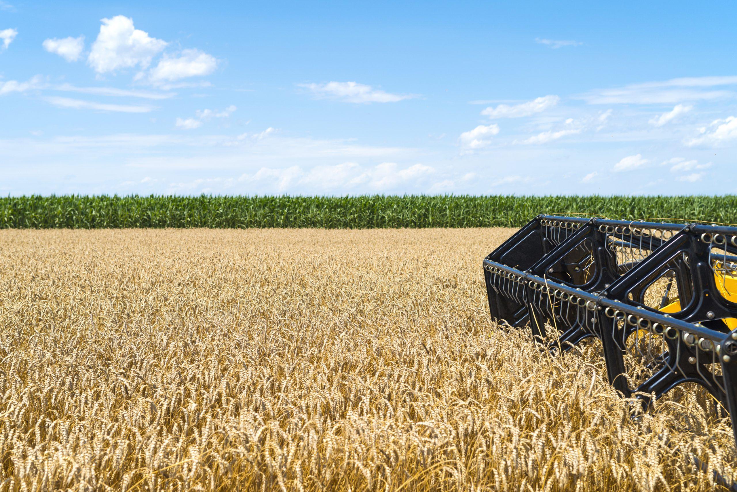 Combine harvester working in the field.
