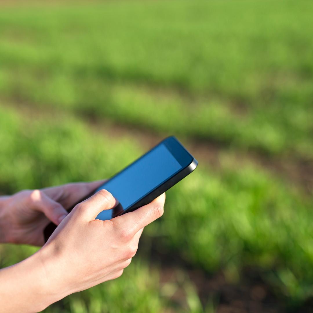 Redes sociais é aliada do corretor rural